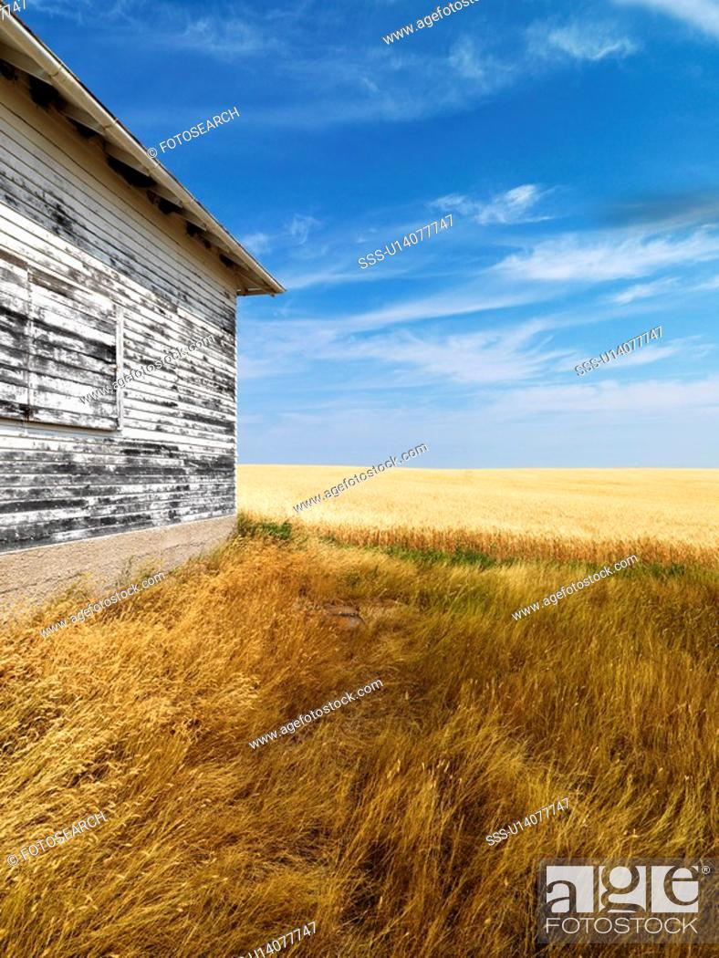 Stock Photo: Exterior of weathered abandoned building with peeling paint in grasslands.