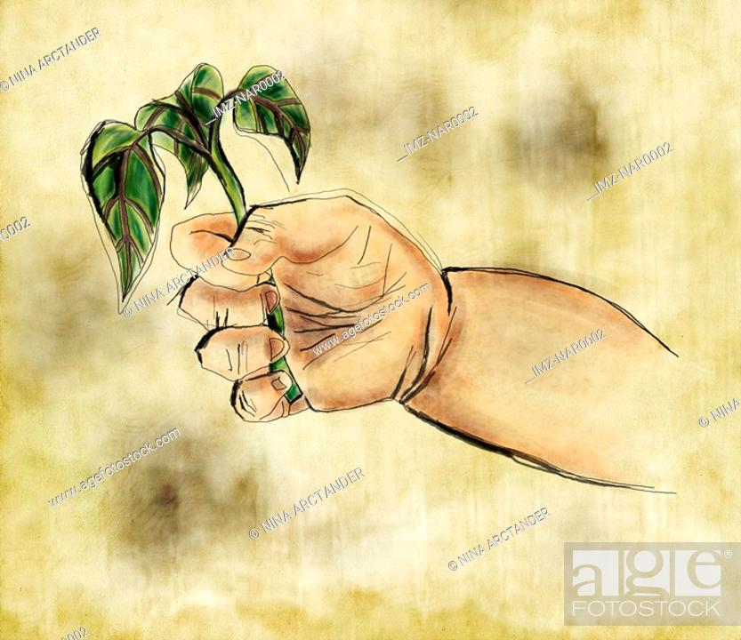Stock Photo: A babys hand holding a sprouting plant.