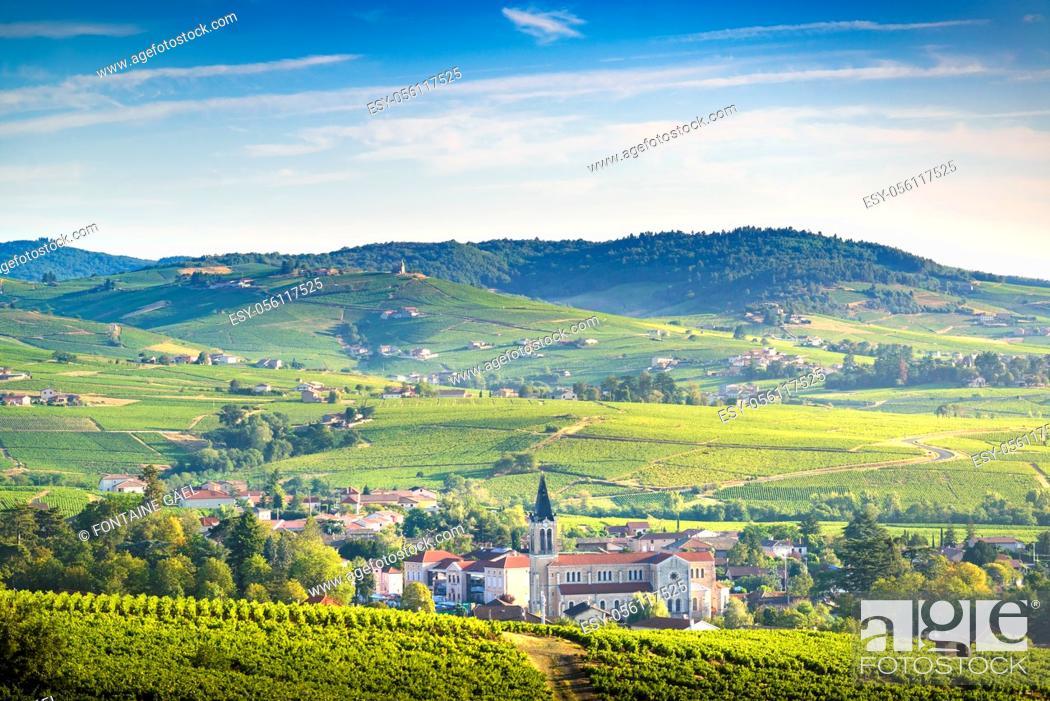 Stock Photo: Paysage et vignobles du Beaujolais, Fleurie et Villié-Morgon, France.