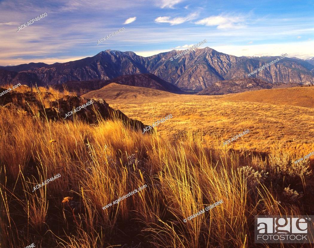 Stock Photo: South Okanagan grasslands, near Osoyoos, British Columbia, British Columbia, Canada.