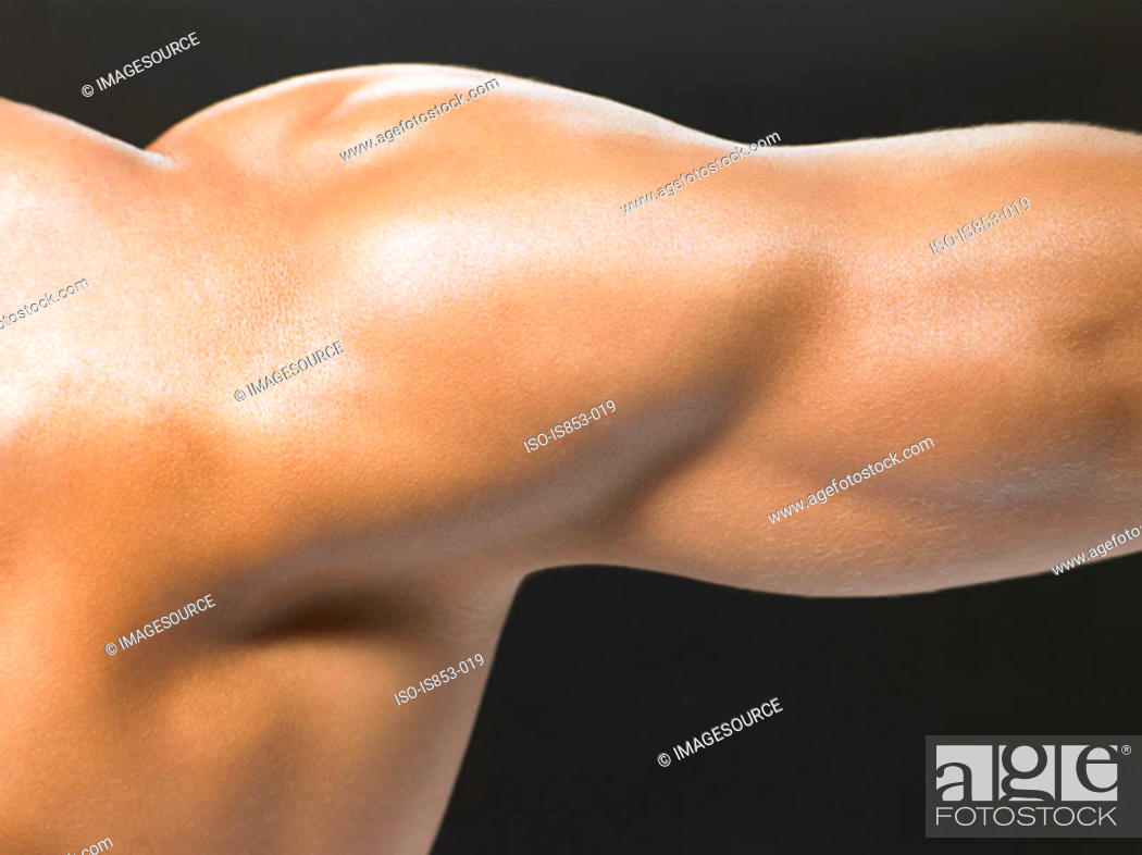 Stock Photo: A mans shoulder and arm.