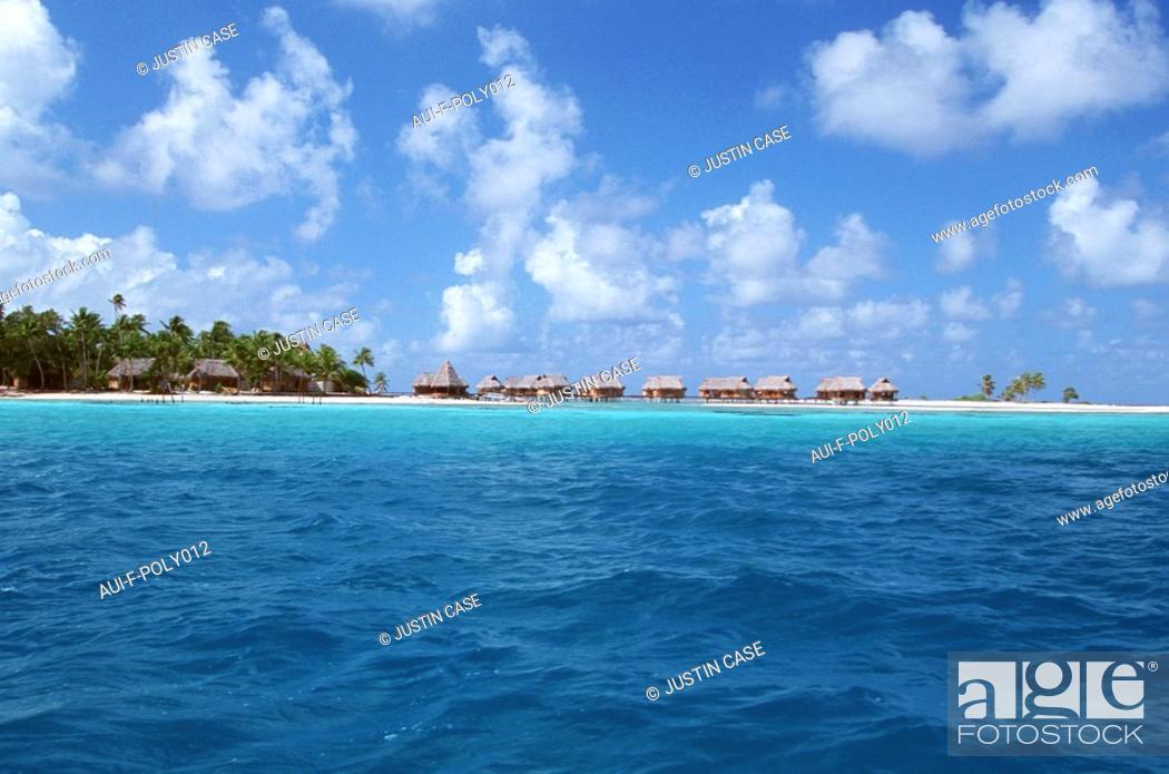 Stock Photo: French Polynesia - Tikehau's atoll - Tuamotu.