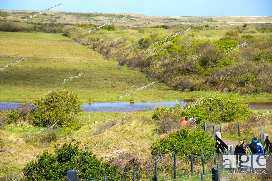 Stock Photo: view at Muy National Park with dunes at Texel.