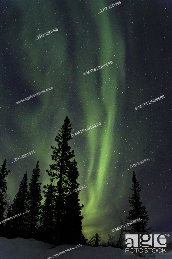 Stock Photo: Northern light, Aurora borealis, colorful sky, Gällivare county, Swedish Lapland, Sweden.