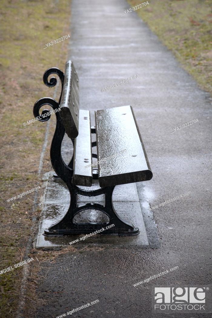Imagen: Wet Bench on Path.