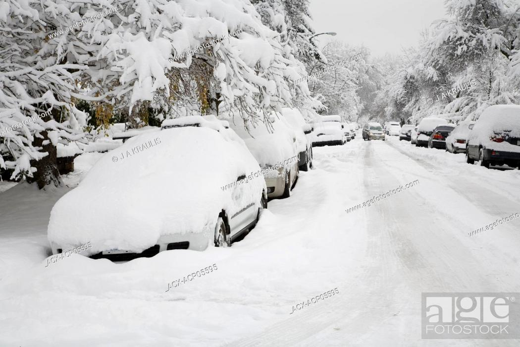 Stock Photo: Cars, trees and street covered in snow after an early winter snowstorm, Point Grey, Vancouver, British Columbia, Canada.