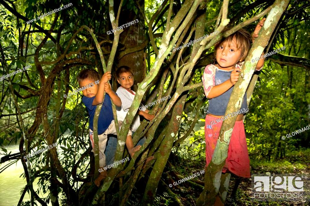 Stock Photo: Three children climbing on trees, Agua Azul Cascades, Chiapas, Mexico.