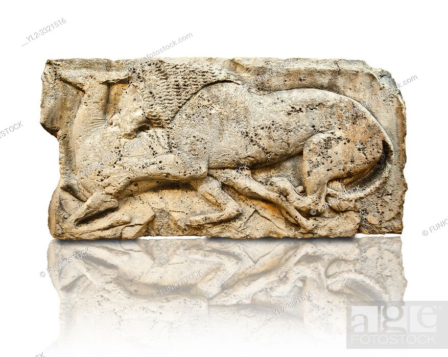"Imagen: Lion killing deer from the ""Satyr Hunting Wils Animals, freezes, 460 B. C. From Xanthos, UNESCO World Heritage site, south west Turkey."