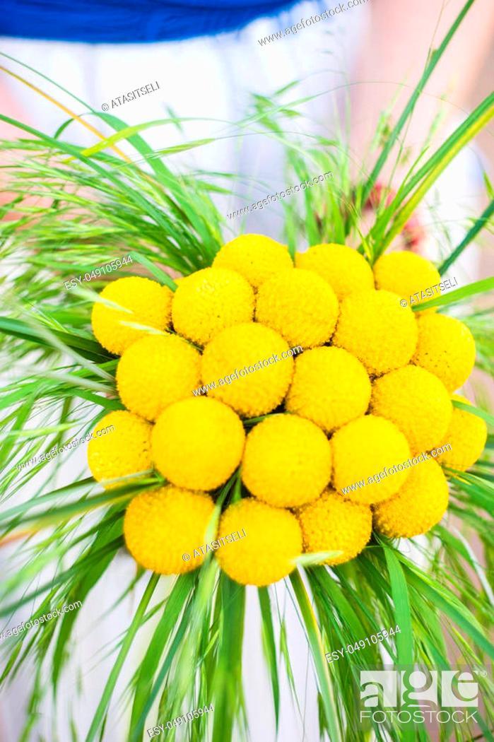 Beautiful Yellow Billy Balls Or Craspedia Flowers In Bride Bunch
