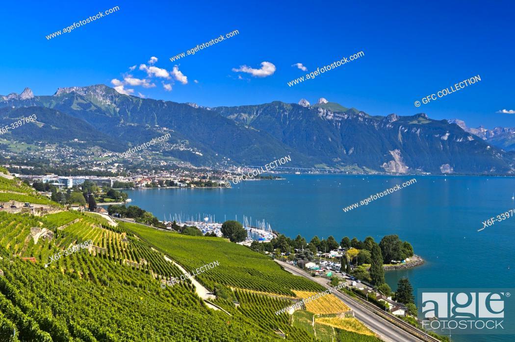 Photo de stock: Lavaux landscape with vineyards at Lake Geneva, view towards Vevey and Montreux, Chardonne, Vaud, Switzerland.