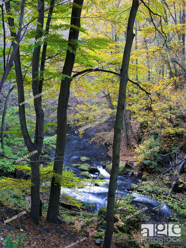 Stock Photo: Autumn in the Bodetal, Harz National Park, Saxony-Anhalt, Germany.