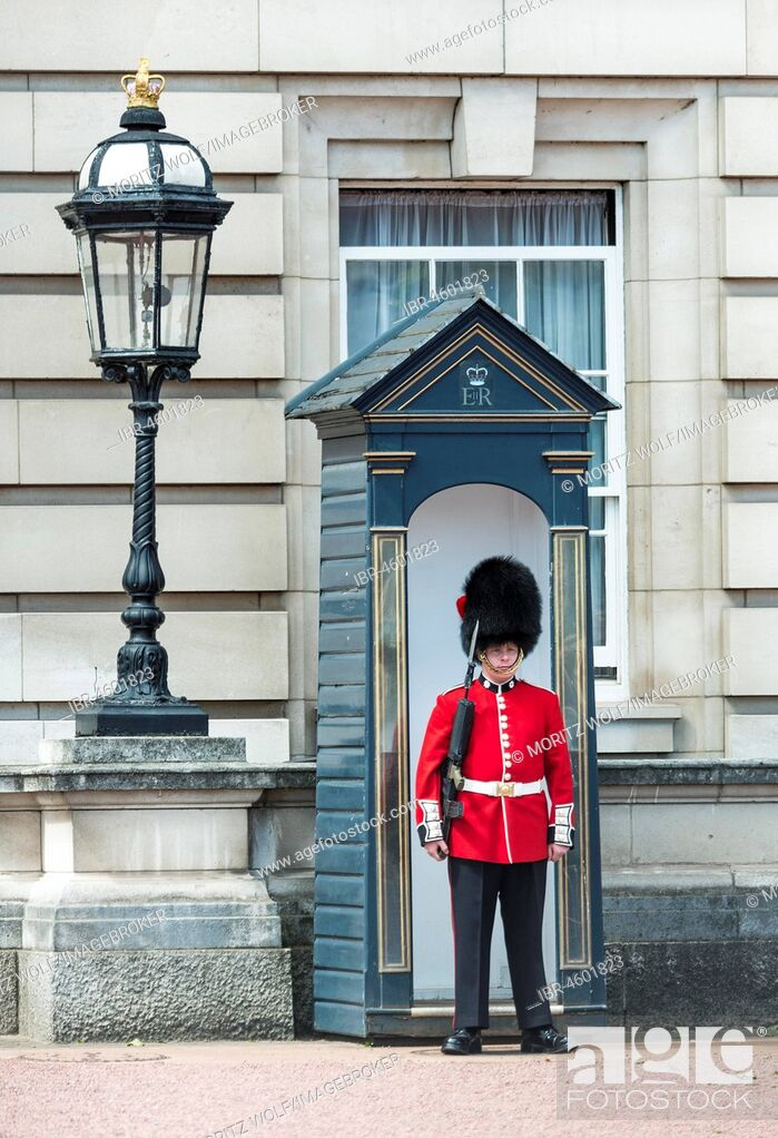 Imagen: Security guard of the Royal Guard with bearskin cap, Buckingham Palace, London, England, Great Britain.