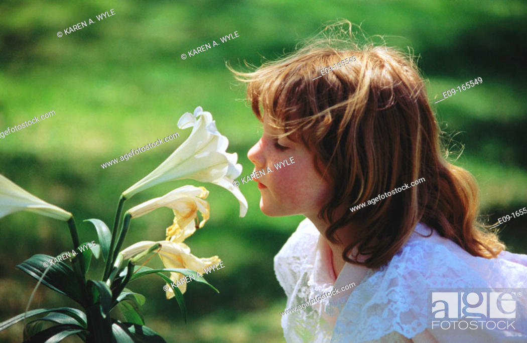 Stock Photo: Little girl in lace dress and sunlit brown hair, smelling white lily in garden.