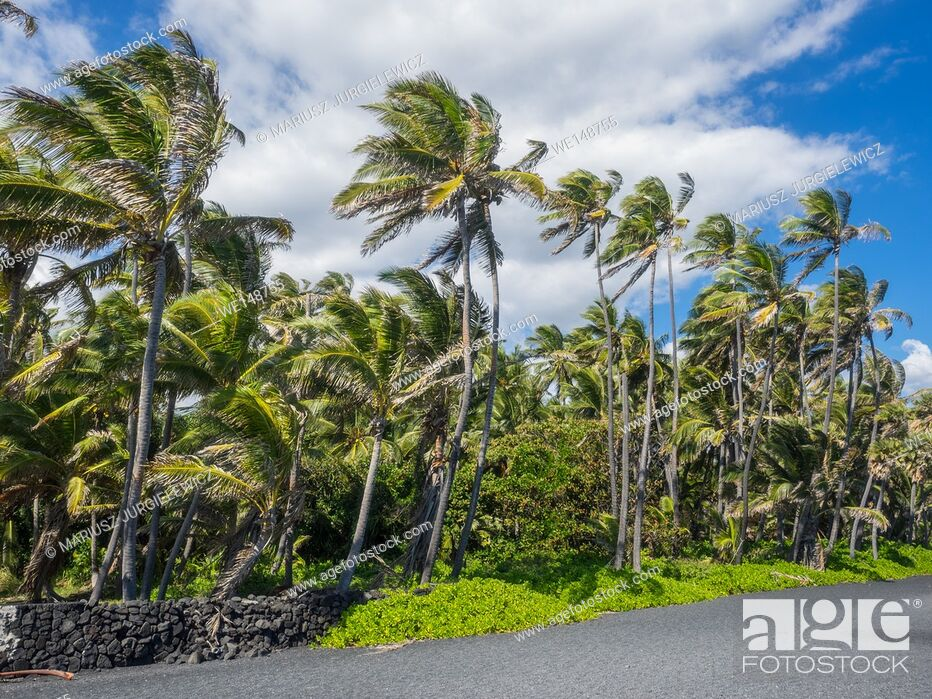 Stock Photo: Punaluu Beach has black sand made of basalt and created by lava flowing into the ocean which explodes as it reaches the ocean and cools.