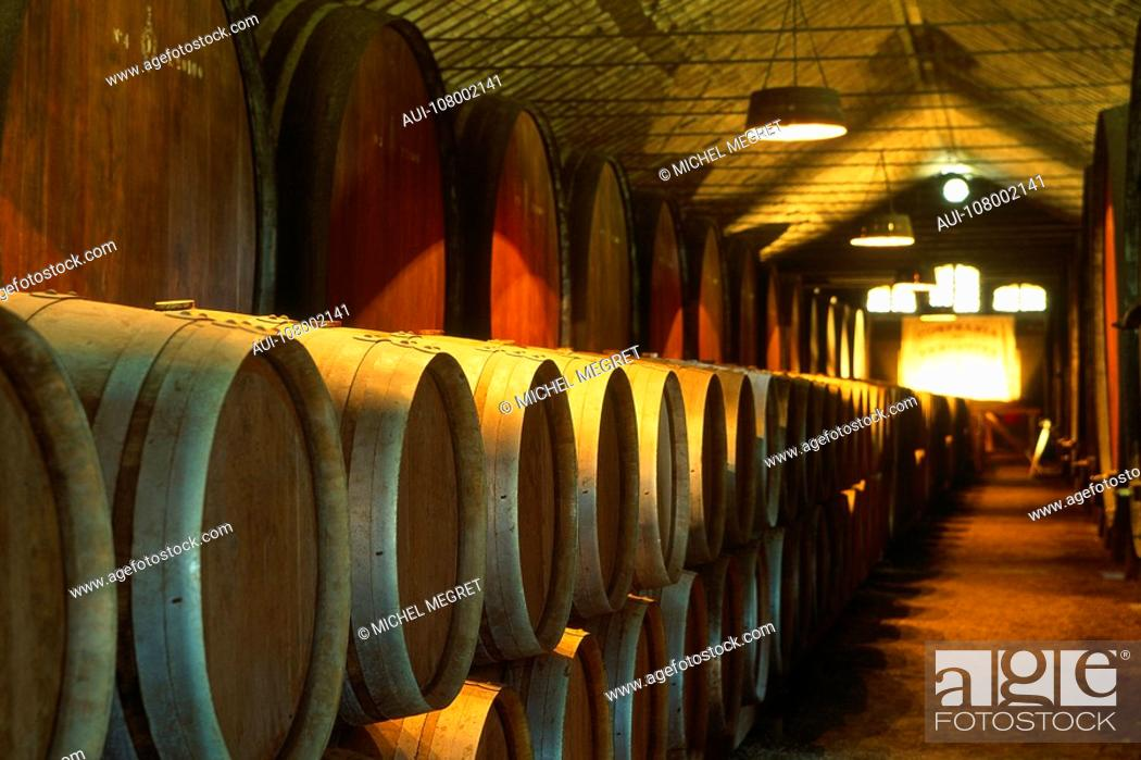 Stock Photo: Portugal - Lisbon - Wine cellar.