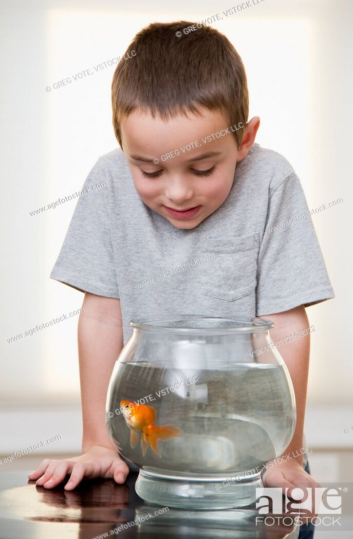 Imagen: Boy (6-7) looking at goldfish in fishbowl.