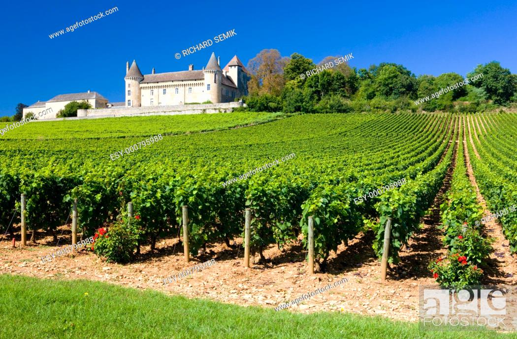 Stock Photo: Chateau de Rully with vineyards, Burgundy, France.