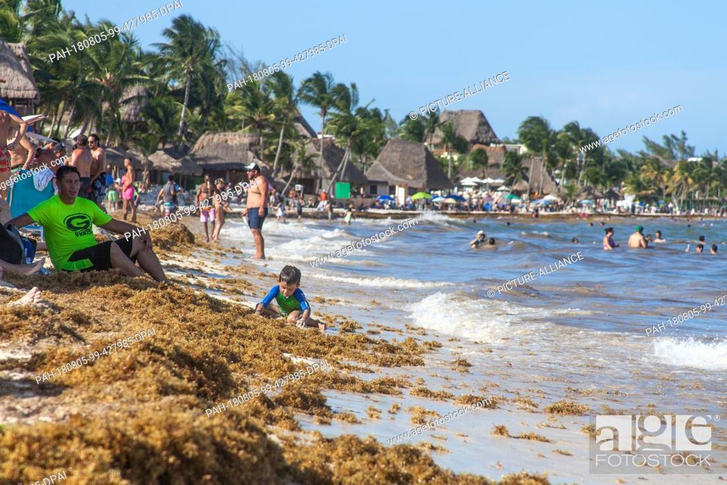 04 August 2018 Mexico Playa Del