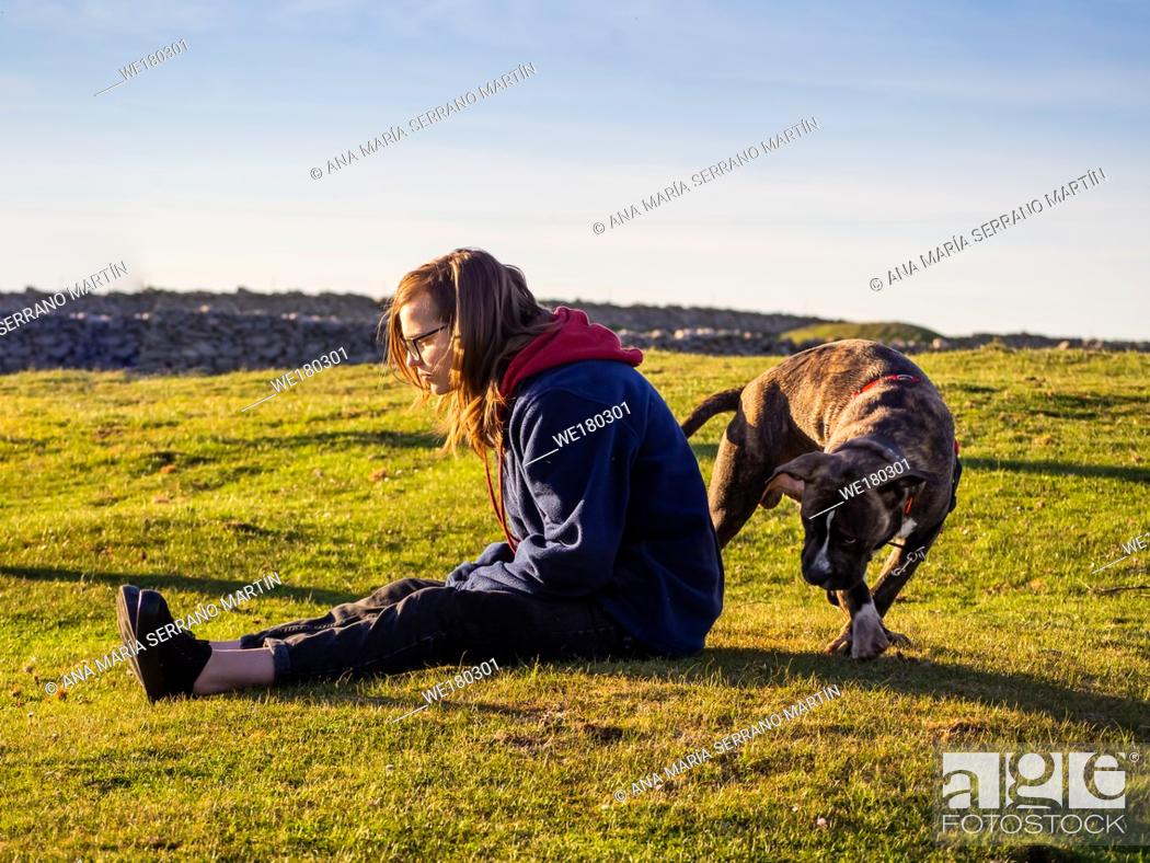 Stock Photo: An teenager woman playing with a young dog of the American staffordshire breed in countryside in springtime.