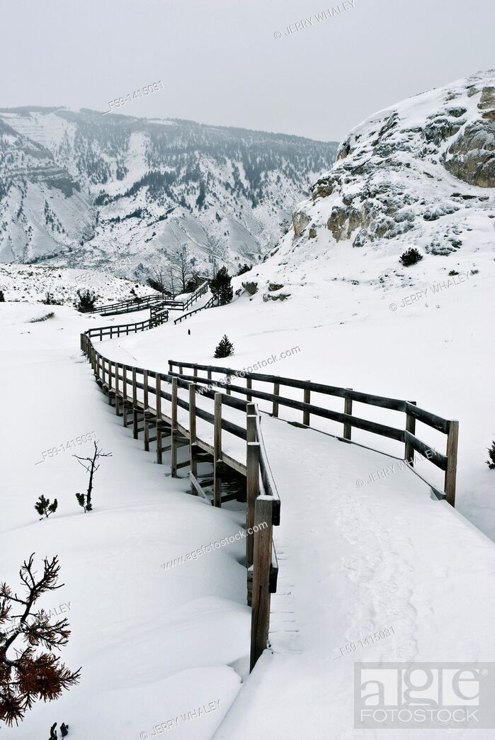 Imagen: Winter, Boardwalk, Mammoth Hot Springs, Yellowstone NP.
