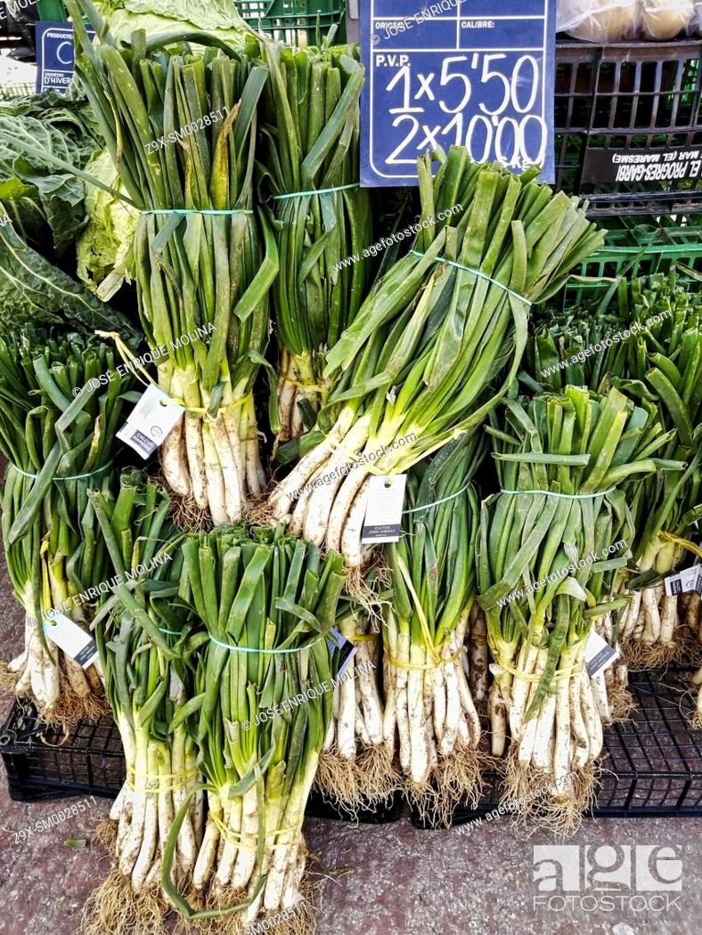 Stock Photo: Mediterranean market in Alella village, Calçots, traditional vegetable, Barcelona, Catalonia, Spain, Europe.