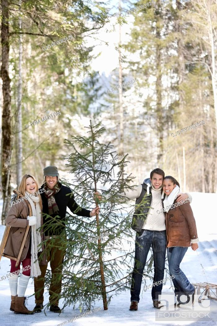 Stock Photo: Portrait of smiling couples with fresh cut Christmas tree in woods.
