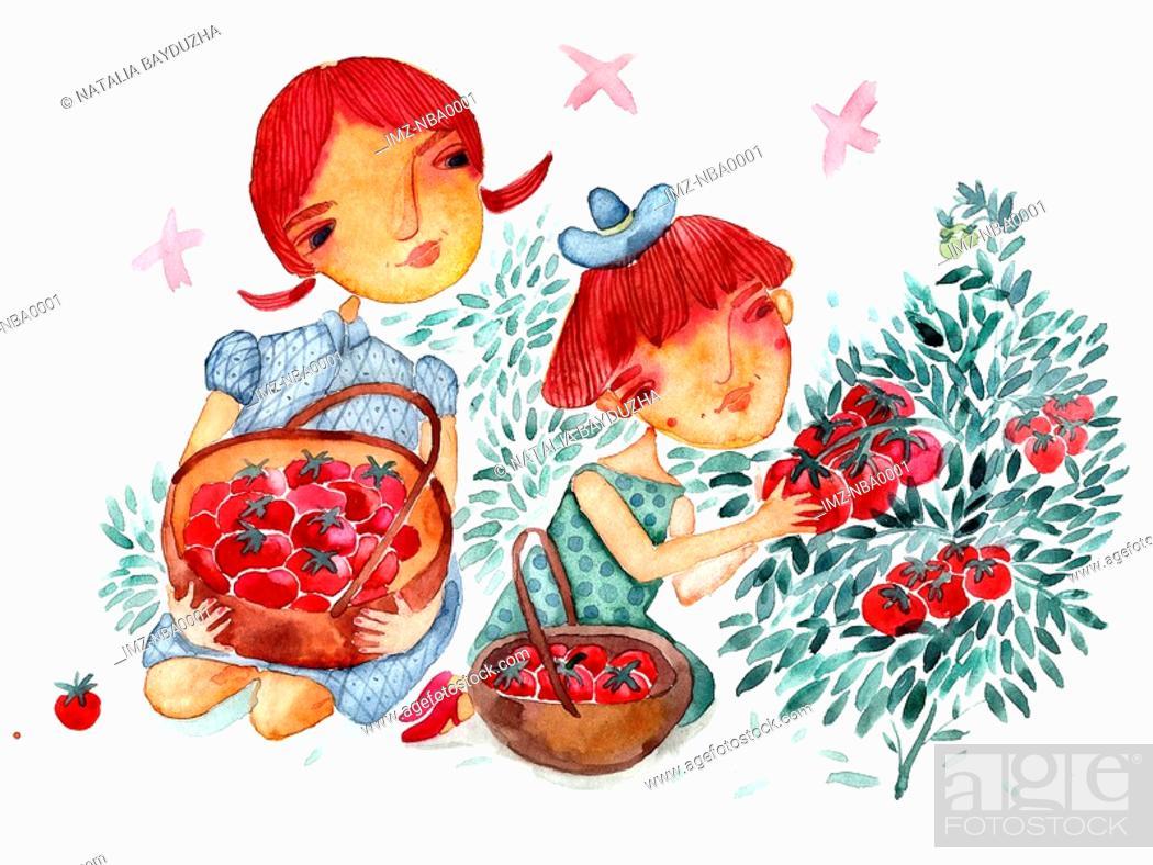 Stock Photo: Two girls picking strawberries.