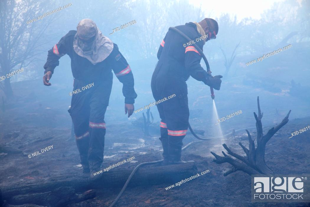 Stock Photo: Firefighters extinguishing forest fire, Table Mountain National Park, South Africa.