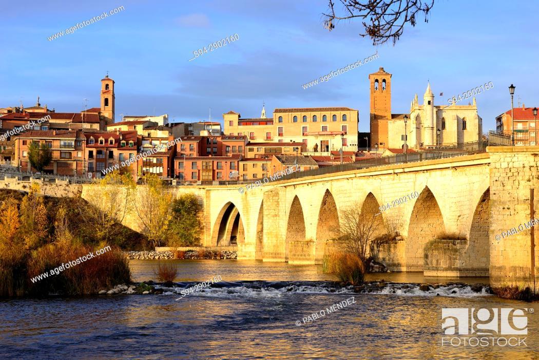 Imagen: Bridge over Douro river and facades of Tordesillas town, Valladolid, Spain.