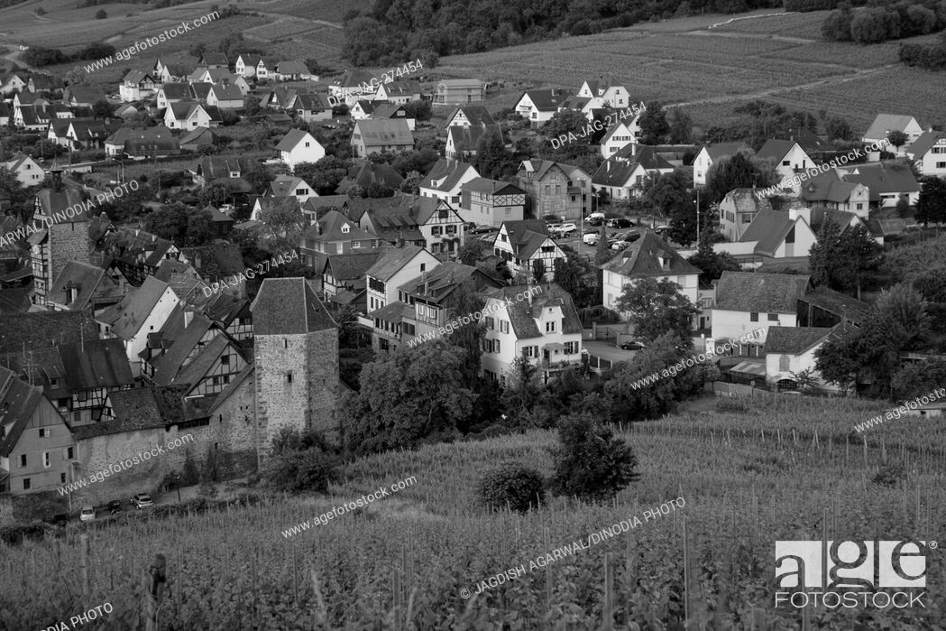 Stock Photo: Aerial of small town, Old Houses, Riquewihr, Alsace, France, Europe.