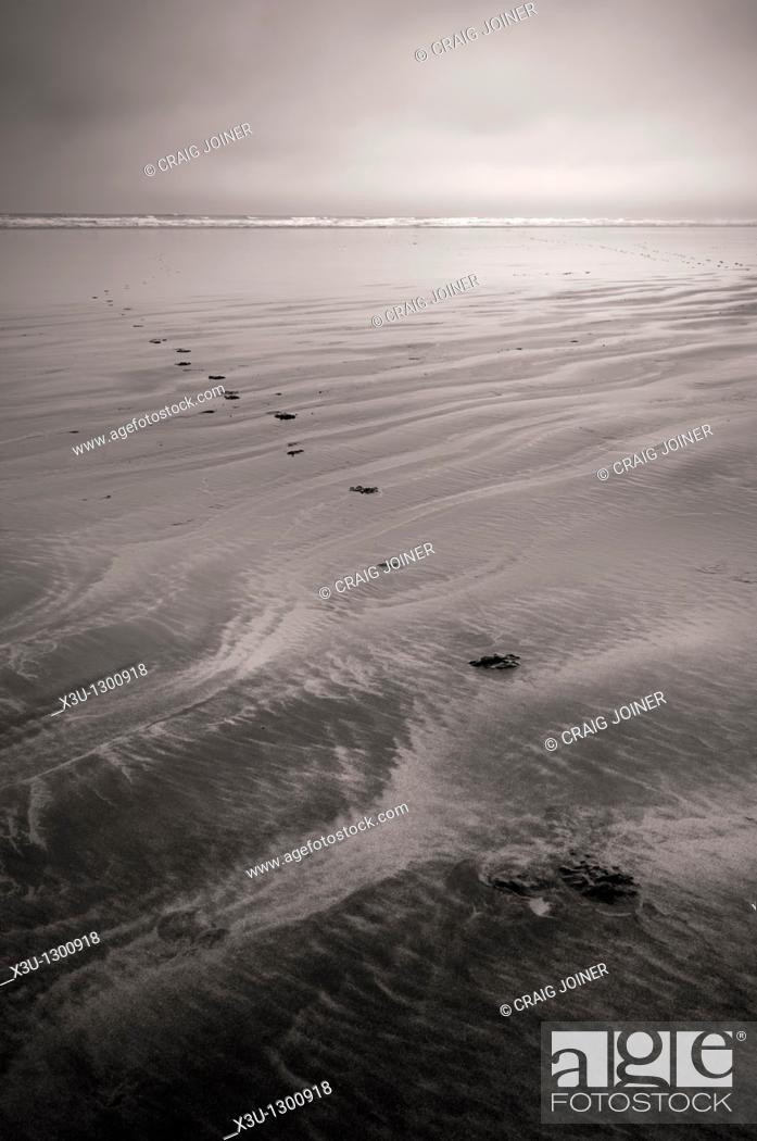 Stock Photo: Footprints in the sand at low tide at Westward Ho!, Devon, England, United Kingdom.