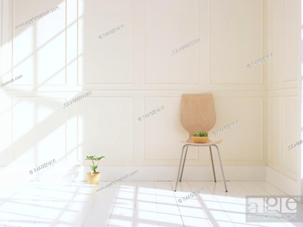 Stock Photo: Chair and plant.