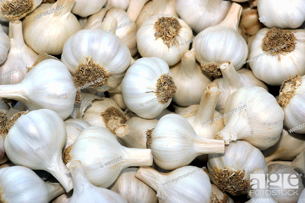 Stock Photo: Garlic, market, agriculture, Brazil.