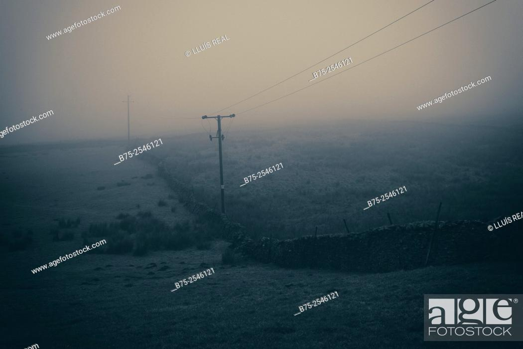 Stock Photo: Rural landscape in a foggy day with a dry stone wall and electrical poles and wires. Yorkshire Dales, Skipton, England, UK, Europe.
