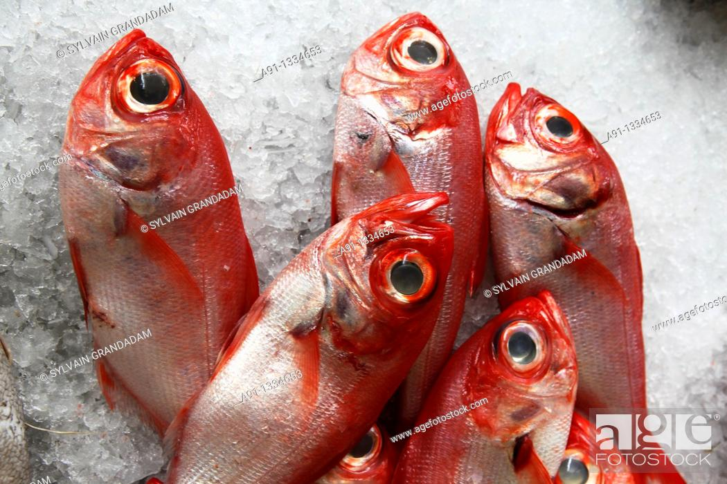 Stock Photo: Portugal, Madeira, Funchal, the fish market.