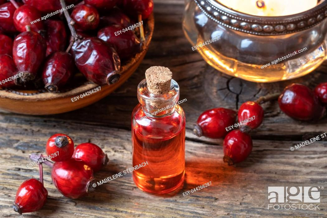 Stock Photo: A bottle of rose hip seed oil with dried berries.