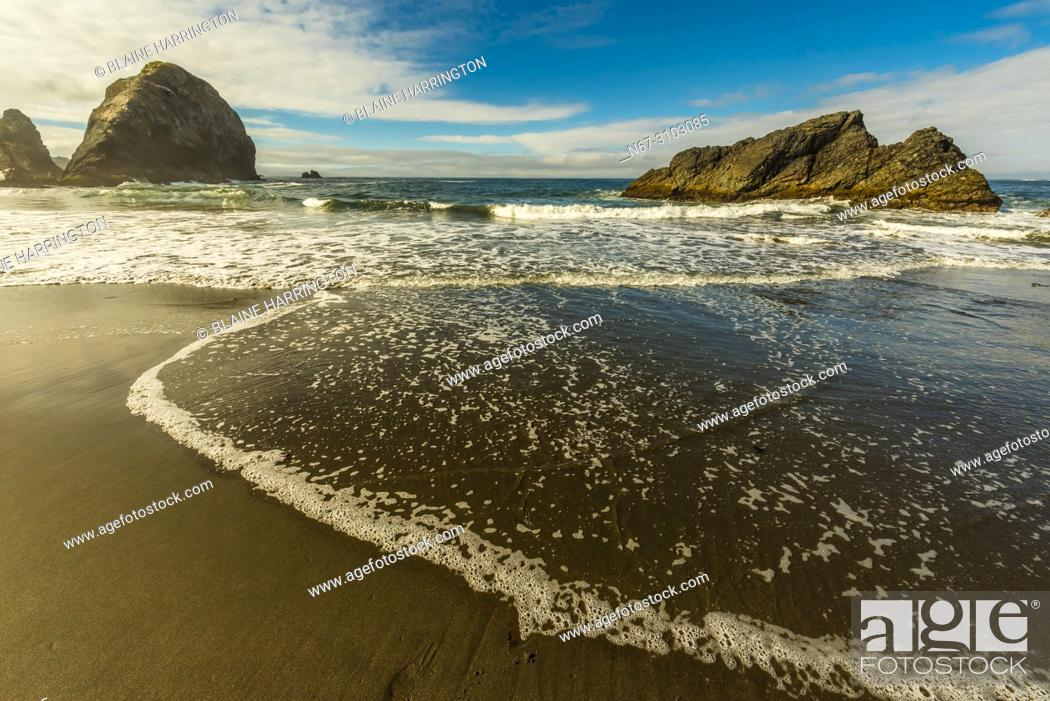 Imagen: 4 and 6 year old brothers playing in the surf at Harris Beach State Park, Brookings, Oregon USA.