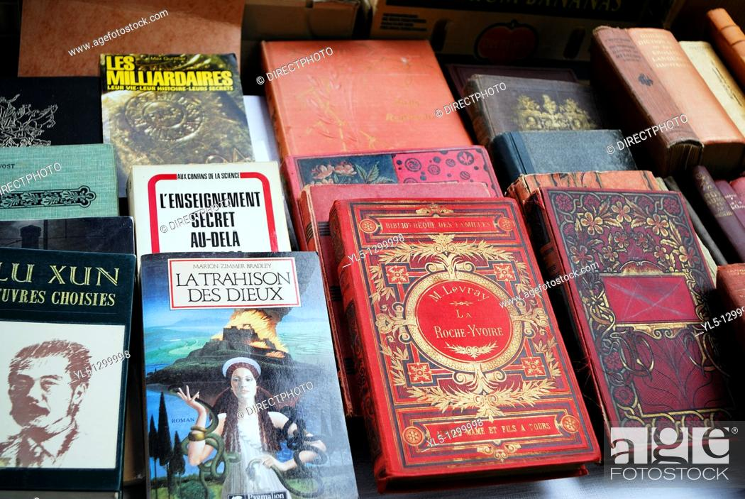 Stock Photo: Paris, France, Shopping, Flea Market, French Language Collectible Books on Display in Public Market, Cour de Vincennes.