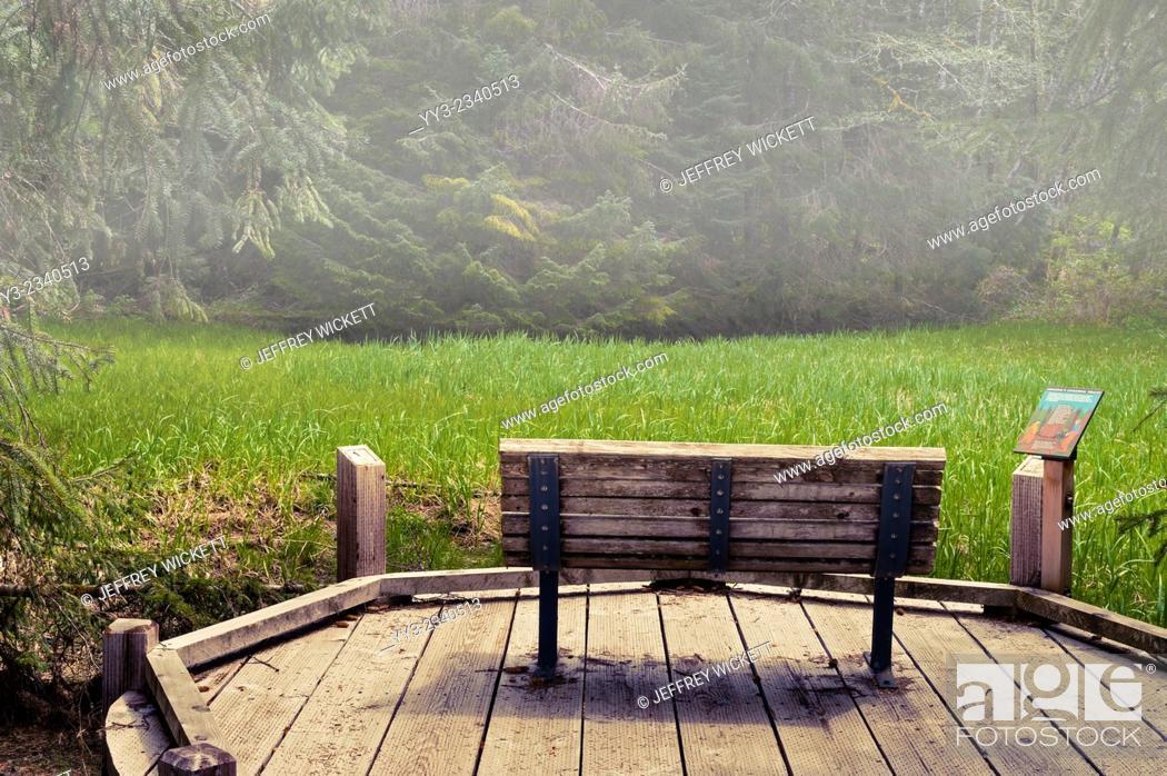 Bench Along Wooden Walkway At Starrigavan Camp Ground Tongass