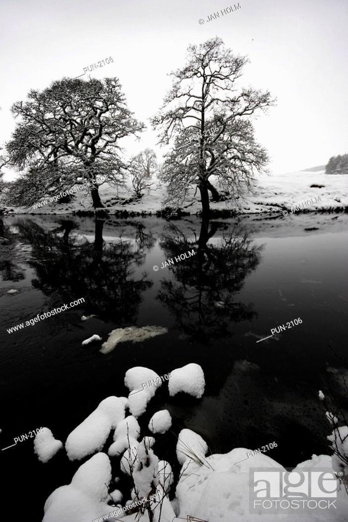 Stock Photo: Glen Esk and North Esk river in winter.