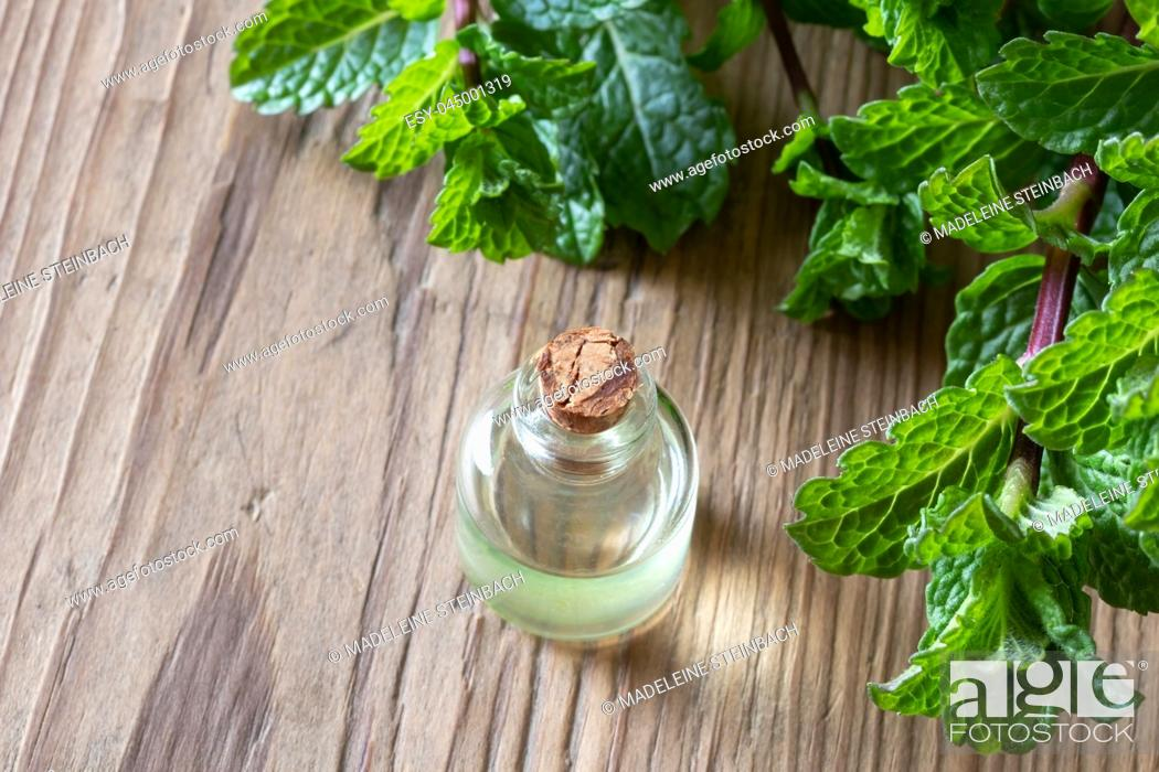 Stock Photo: A bottle of essential oil with fresh peppermint leaves on a wooden background.