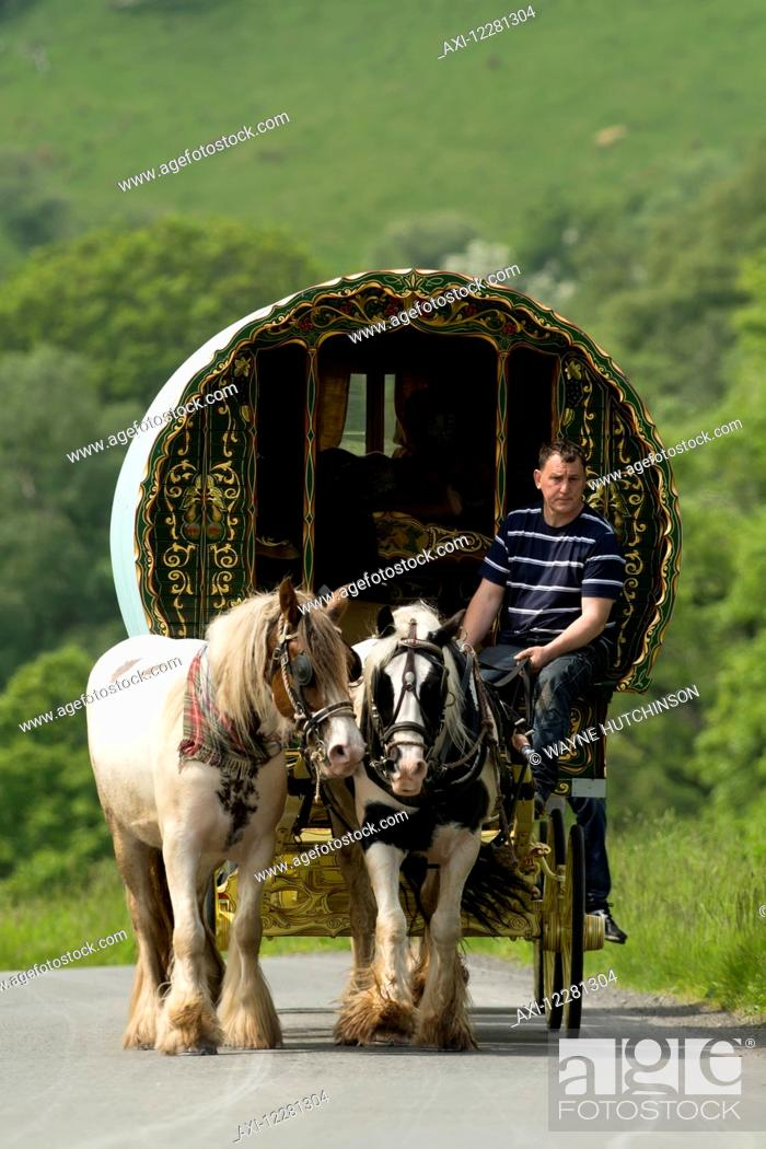 Stock Photo: Horse drawn caravans heading towards the horse fair at Appleby in Westmorland; Cumbria, England.