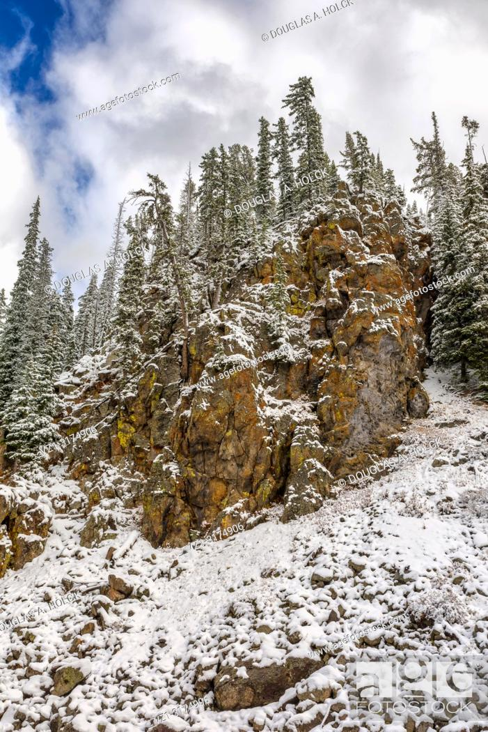Imagen: Fall Snow in Yellowstone National Park.