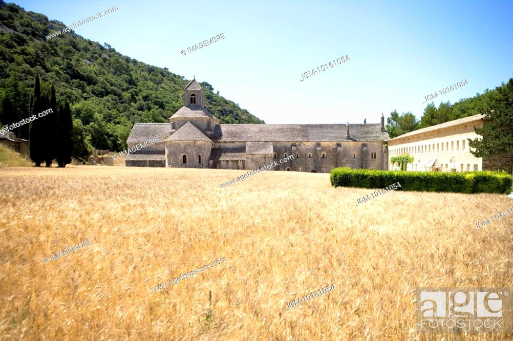 Stock Photo: Abbaye de Senanque in Gordes, Provence-Alpes-Cote d'Azur, France.
