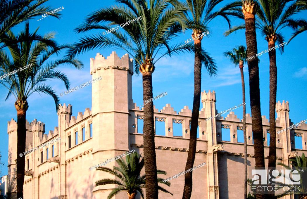 Dating Palma Mallorca online dating antwoorden op berichten