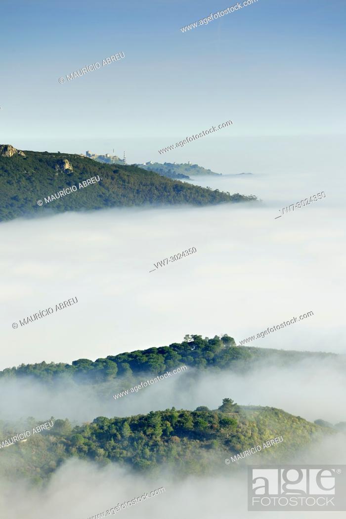 Imagen: Arrábida Natural Park in a foggy morning. Setúbal, Portugal.