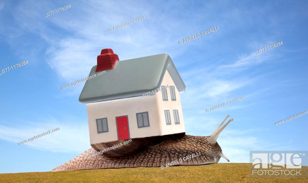 Stock Photo: Snail with house.
