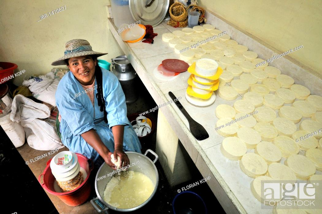 Stock Photo: Woman in the production of fresh cheese in the Penas Valley, Oruro Department, Bolivia, South America.
