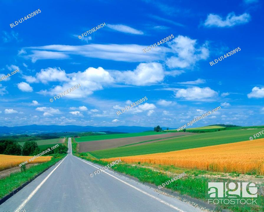 Stock Photo: Road in the country.
