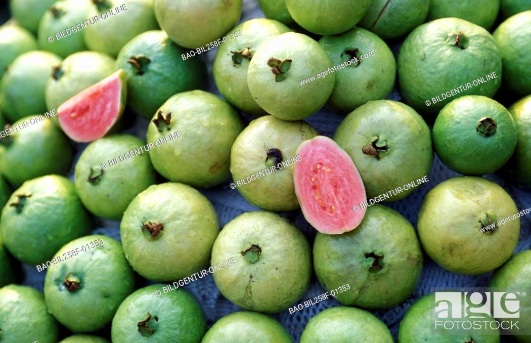 Stock Photo: Guava fruits at a market in the Mekong delta near the city of Can Tho in sueden from Vietnam in southeast Asia.